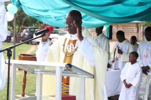 David ordination