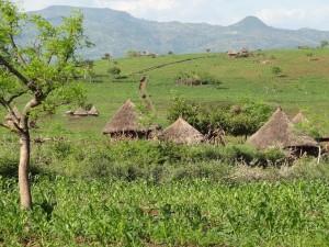 paysage konso (2)